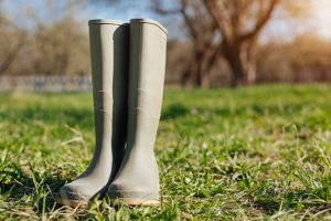 Wellington Boot Hire Included